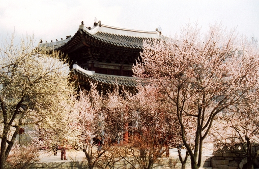 Palace in Seoul, S. Korea